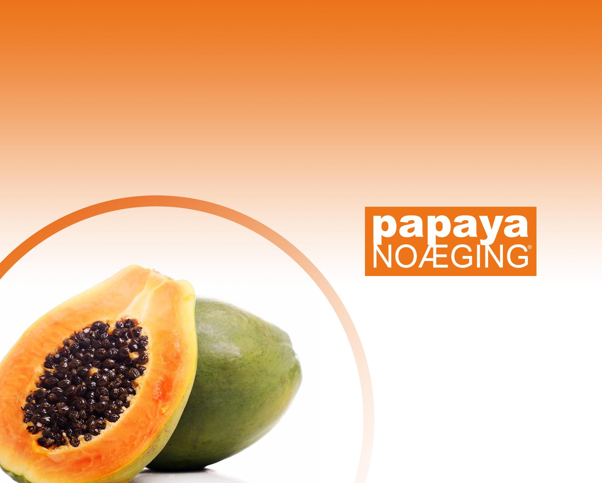 Papaya Noæging